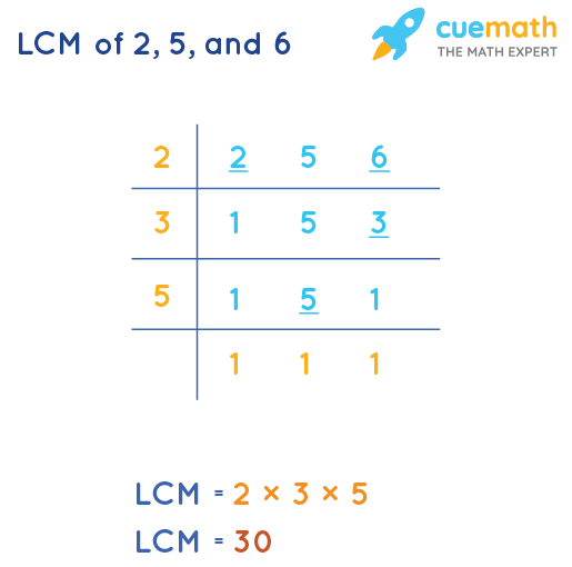 LCM of 2, 5, and 6 by Division Method