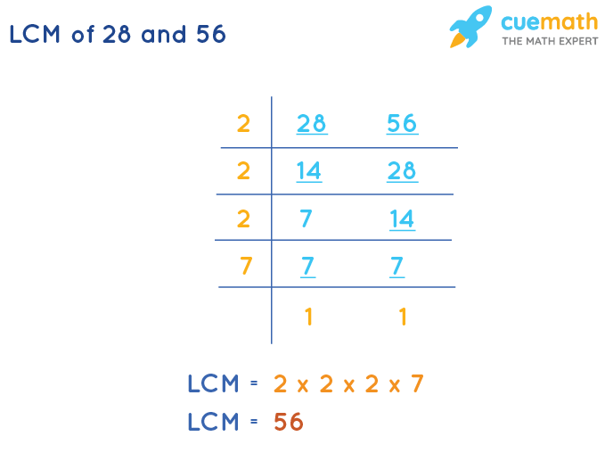 LCM of 28 and 56 by Division Method